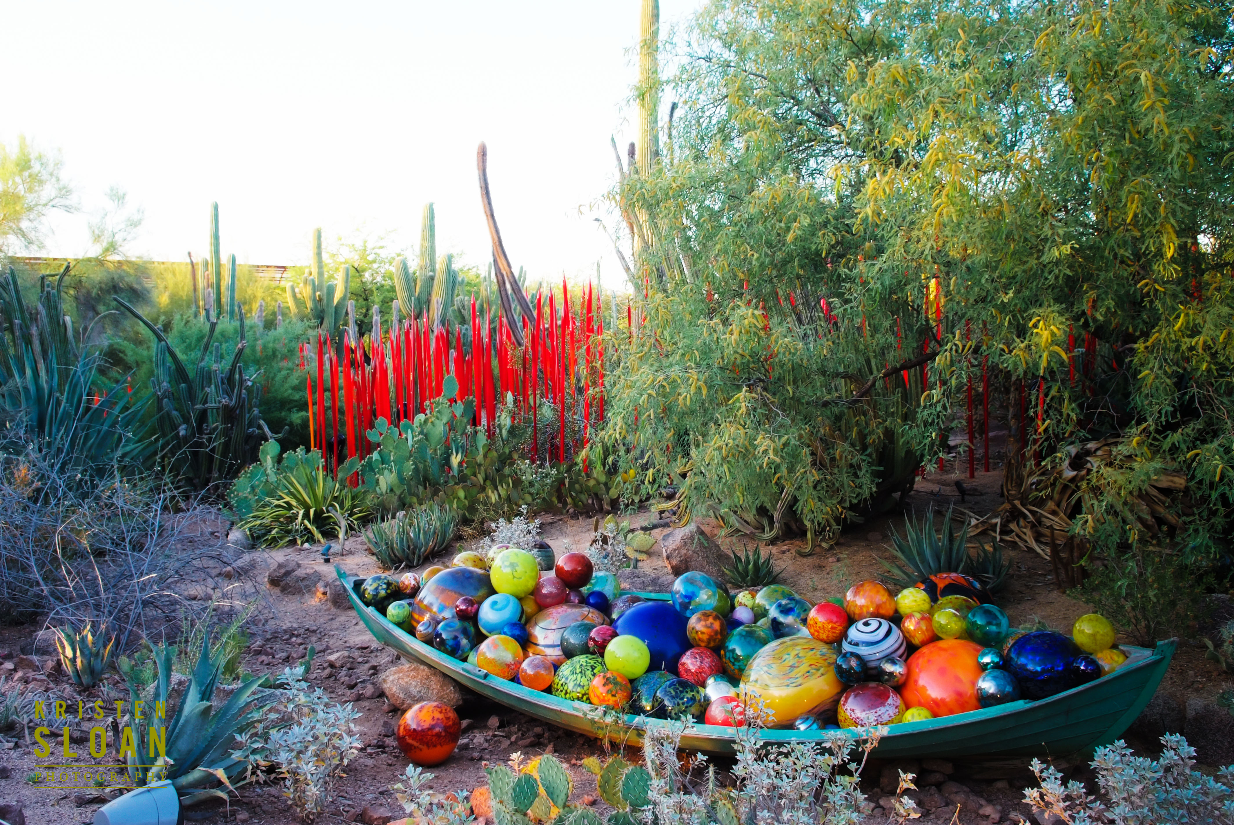 Dale Chihuly Exhibit At The Desert Botanical Gardens